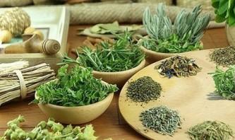 Травы для очищения печени