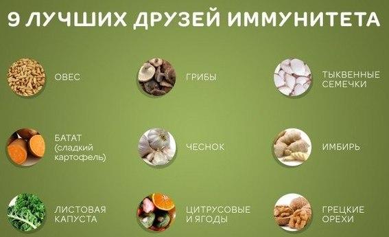 Immunetica